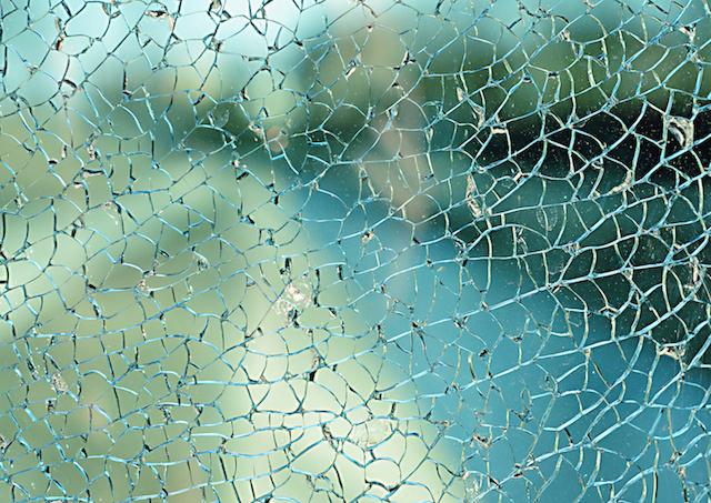 spider's_web
